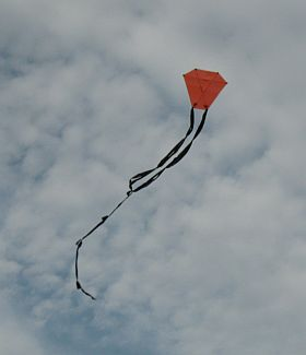 Kite Blog - original 2-Skewer Barn Door kite in flight.