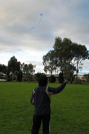 Kite Blog - a Tiny Tots Diamond kite made from blue plastic.