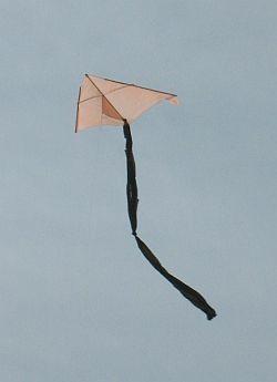 1 Skewer Delta Kite