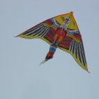 Eagle Delta kite apparently Made In China.