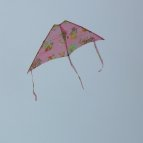 Small pink Delta kite.
