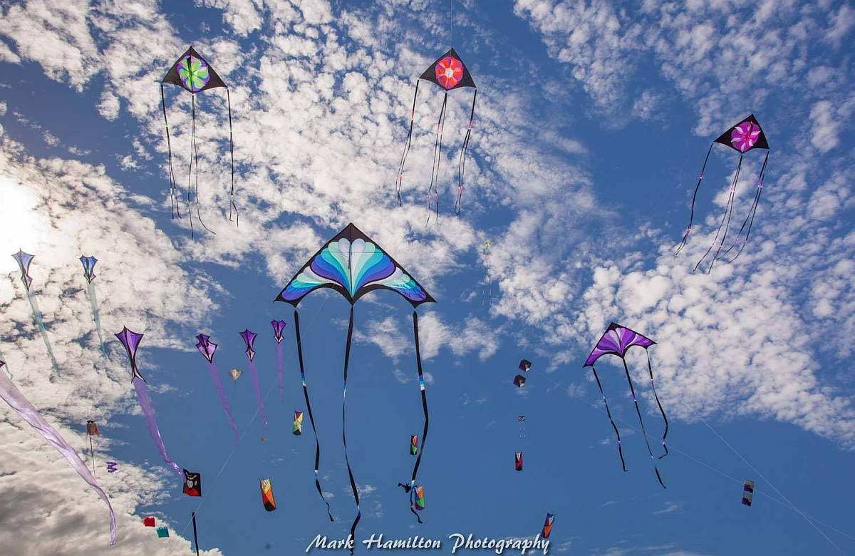 A flock of Robert Brasington art kites float above the sand.