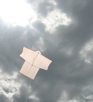 Learn how to make a Sode kite like this one.