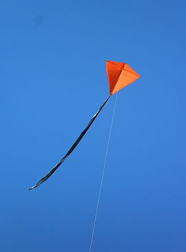 2-Skewer Diamond kite in flight.