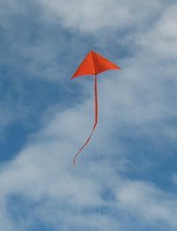 This flying kite is the MBK Simple Delta.