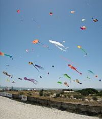 Kite festivals seem to have a  cloud of kites at times!