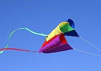 A ram-airl Sled kite in flight.