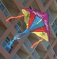 Our old Windjam Delta kite.