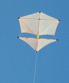 Roller Kites - the 2-Skewer Roller in flight.