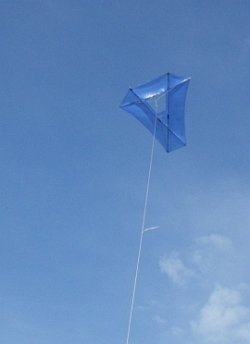 Fresh Wind Barn Door kite in flight.