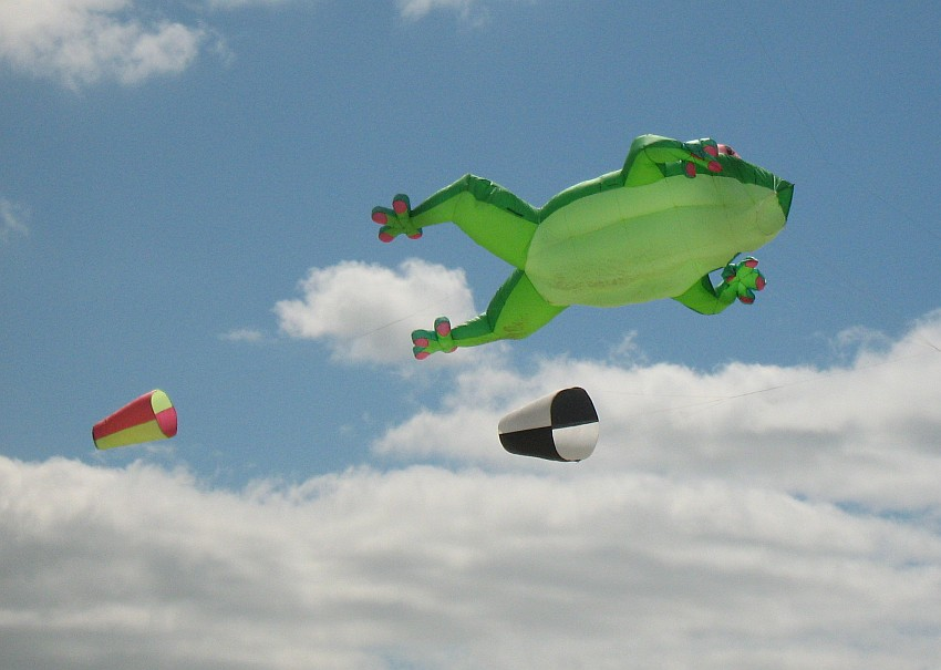 Different kinds of kites seen at festivals - a giant pink and purple sea horse inflatable kite
