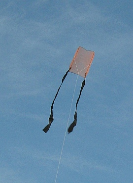 Learn how to make a Sled kite like this 1-Skewer Sled.
