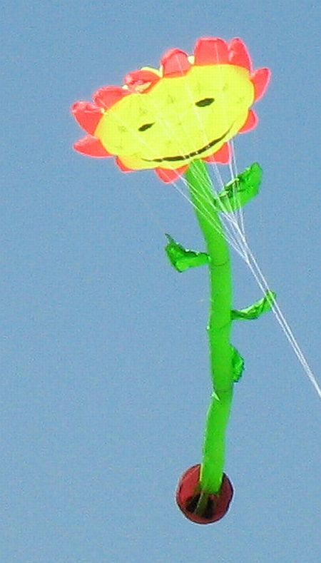 How about this Sunflower kite for a touch of humor...