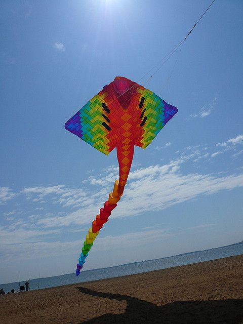 A giant Peter Lynn Maxi Ray kite.