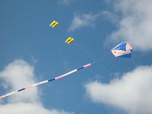 A large Flowform kite at the Adelaide festival.