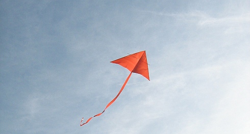 How does a kite fly? Find out on this page.