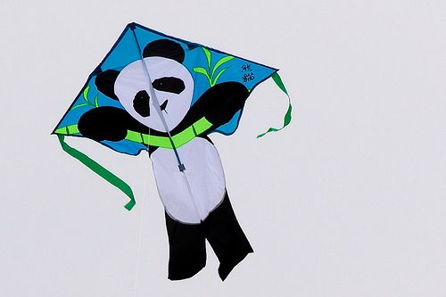 Slightly assymetric Panda kite.