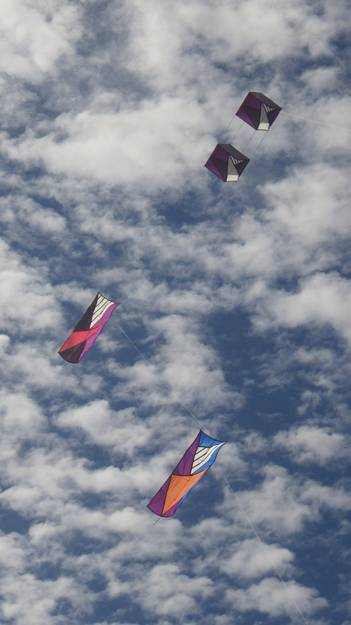 AIKF 2017. A Box kite above and 2 rectangular designs from Malaysia below.