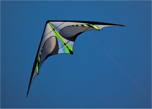 Trick Kites, Stunt Kites, what's the difference?
