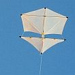 The MBK 2-Skewer Roller kite.