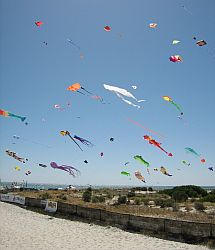 Adelaide Kite Festival 2008 - colorful kites over Semaphore beach