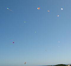 Adelaide Kite Festival 2009 - high flying kites.