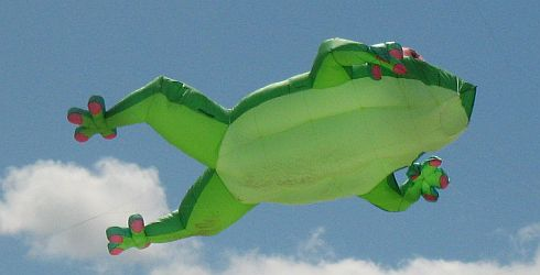Inflatable kit, huge green frog.
