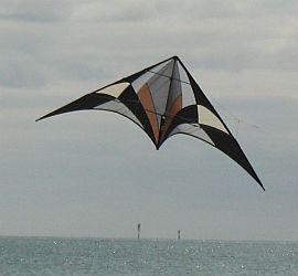 A big Delta sport kite.