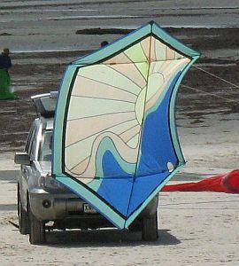Large Rokkaku, featuring a rising sun design.