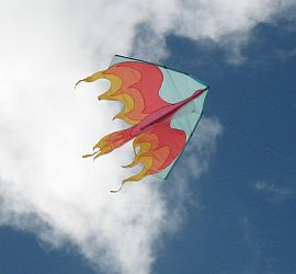 Firebird delta kite with pale blue leading edges.