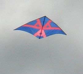 Pink and blue Delta kite.