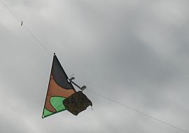 A kite messenger on its way up the line.