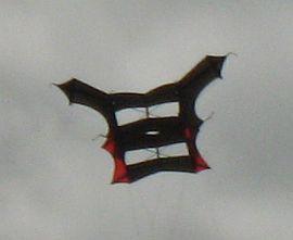 Black and red Cody kite.