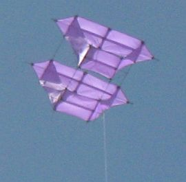 Light purple winged box kite.