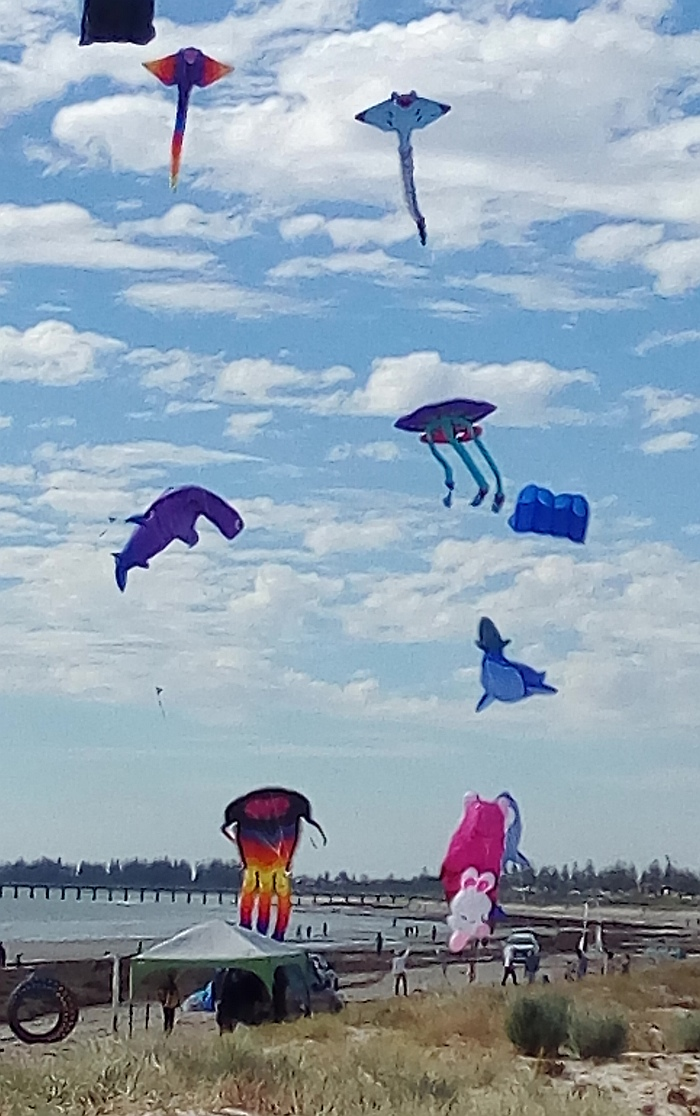 AIKF 2017. Kites at the northern end, on Saturday.