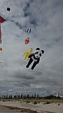 Adelaide Kite Festival 2016 - panda inflatable.
