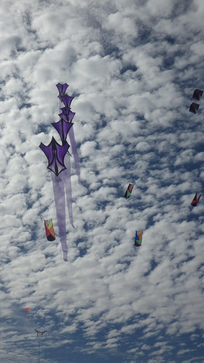 AIKF 2017. A train of Robert Brasington art kites.