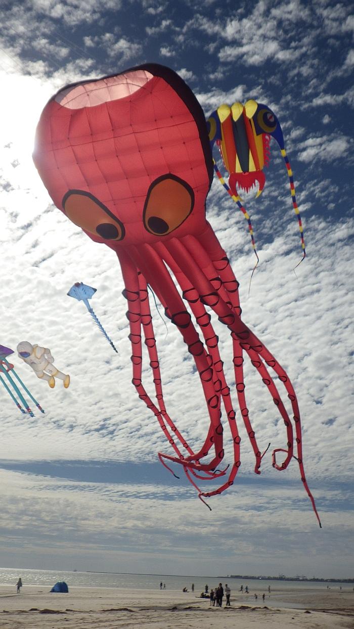 AIKF 2017. A very large Peter Lynn Octopus kite.