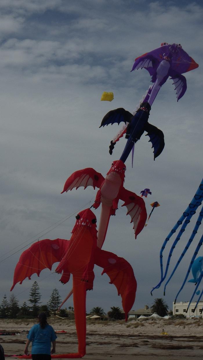 AIKF 2017. A train of inflatable Dragon kites.