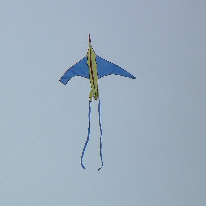 Blue-winged jet plane kite.