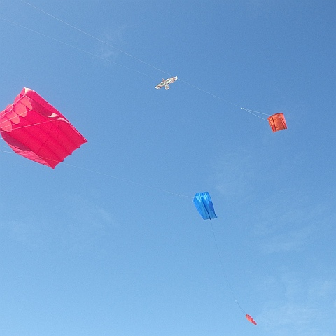 AKFA Fly Day
