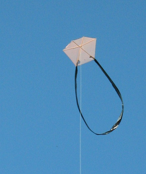 The 1-Skewer Barn Door kite in flight