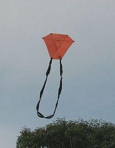 Barndoor Kites - 2-Skewer barndoor with looped tail