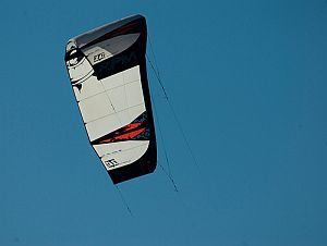 Large black and white LEI kite.