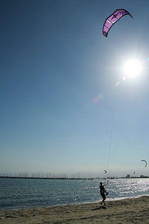 Beach Kites -