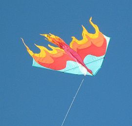 A Firebird Delta we saw at a kite festival.