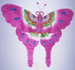 Traditional Chinese butterfly kite