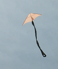 Very cheap kites can be made from bamboo skewers and plastic!