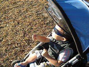 Child Flying Kite - Aren flying 1-Skewer Delta from pram.