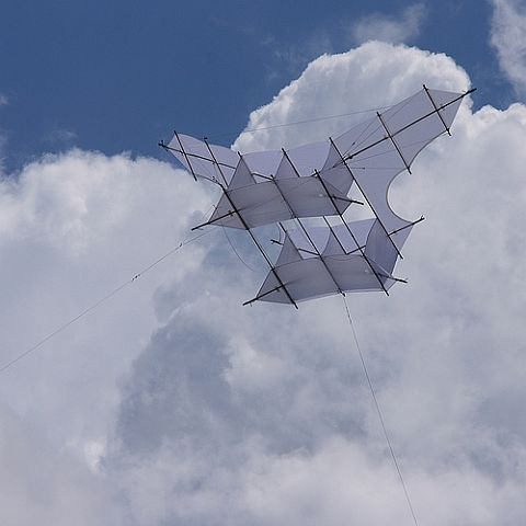 A modern day replica of the famous Cody War kite.